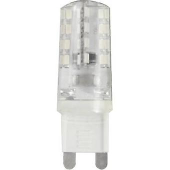 LightMe LM85221 LED (monochrome) EEC A++ (A++ - E) G9 Pen 2 W = 18 W Warm white (Ø x L) 16 mm x 51 mm 1 pc(s)
