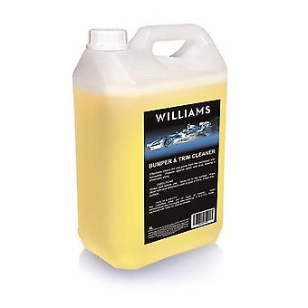 Bumper and Trim Cleaner 5L by  Williams Racing