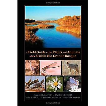 Field Guide kasvien ja eläinten keskellä Rio Grande Bosque