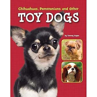 Hund-Dateien Pack A 7 (Edge-Bücher: Hund Dateien)