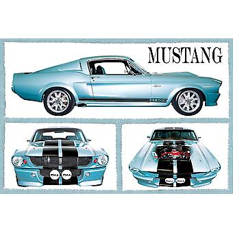 Poster - Studio B - 36x24 Fabulous Mustangs Wall Art CJ1525