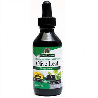 Nature's Answer OleoPein Olive Leaf 60ml 1389