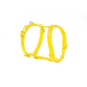 Freedog Basic Nylon sele gul (hundar, kragar, Leads och selar, seldon)