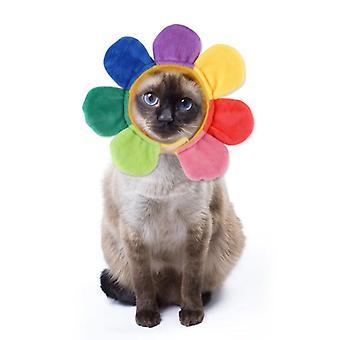 Fun Floarea-soarelui Cat Hat, Pet Costum, Cosplay Hat, Keep Warm Animal, Colorat, Pluș, Iepure, Cat Accesorii