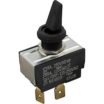 Raypak 650761 interruptor