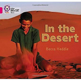 Nel deserto: Band 1B/rosa fase 8, Bk 6 (Collins Big Cat)
