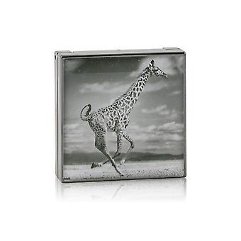 Luminescent eye shade # giraffe (burnished brown) 243902 2.5g/0.08oz