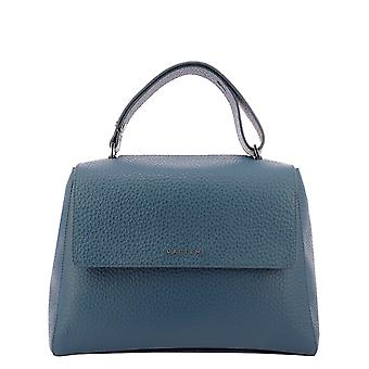Orciani Bt2006softtabisso Women's Petrol Leather Handtas