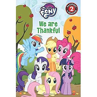 My Little Pony: We zijn dankbaar (paspoort naar reading level 2)