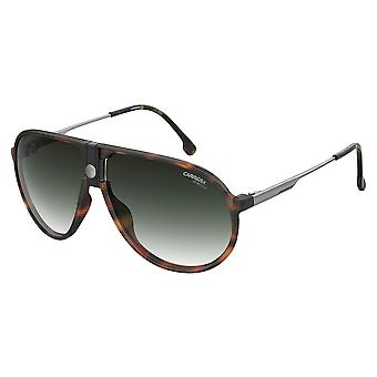 Carrera 1034/S 086/9K Havanna/Gröna skuggade glasögon