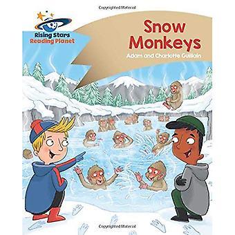 Behandlingen Planet - snö apor - guld: Komet Street Kids (stigande stjärnor läsning Planet)