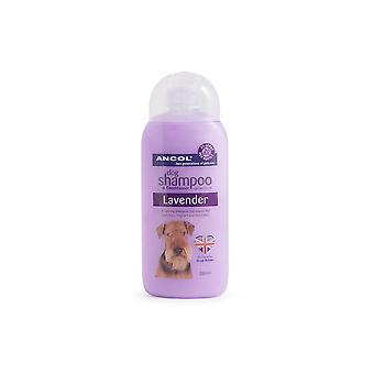 Pies Ancol szampon Lawenda uspokaja szampon idealna odżywka do włosów 200ml