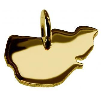 Hänge i guldgult-guld i form av PELLWORM