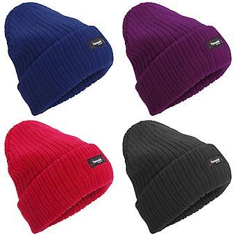 Womens/Ladies Thinsulate Thermal Winter Hat (3M 40g)