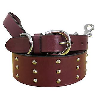 Bradley crompton véritable cuir correspondant collier de chien paire et ensemble de plomb bcdc21pink