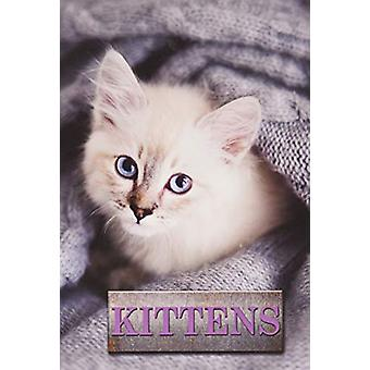 Kittens by Marcus Schneck - 9781422243169 Book