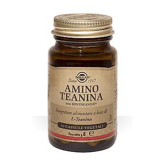 Amino theanin 30 kapslar