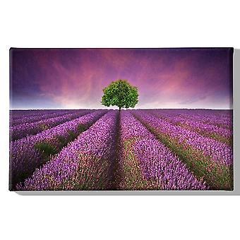 Pintura de flores multicolores en poliéster, madera, L45xP3xA70 cm