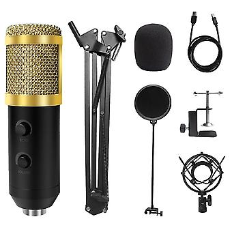 E20 Pc Microphone Usb Mic With 6 Inch Ring Light Arm Stand Professional Studio