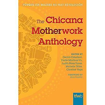 De Chicana Motherwork-Anthology (de feministische draad boeken)