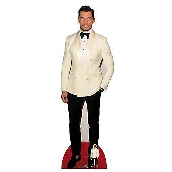 David Gandy Celebrity Cardboard Cutout / Standee / Standup / Standee