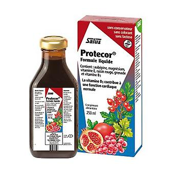 Protecor 250 ml