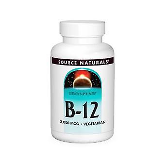Quelle Naturals Vitamin B-12, 2000 mcg, 100 Tabs