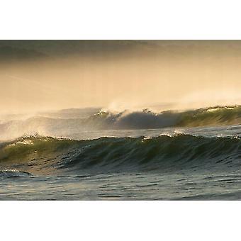 Tapete Mural Waves