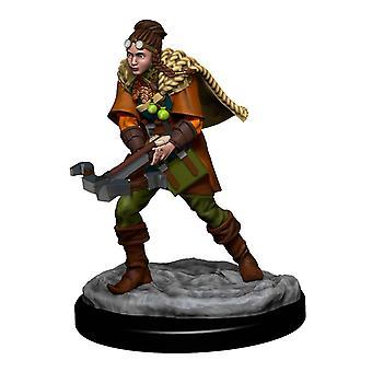 D&D-ikoner för Realms PremiumFigurer (W4) Human Ranger Female