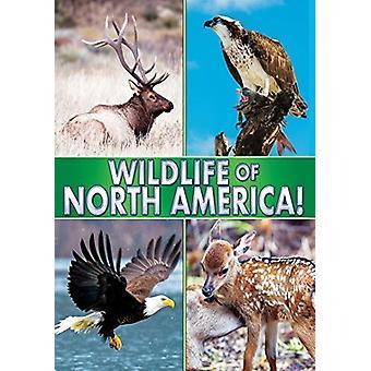 Wildlife of North America [DVD] USA import