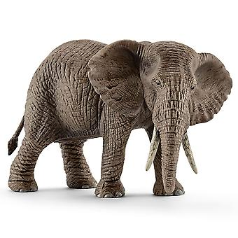Schleich afrikanischer Elefant, Weiblich