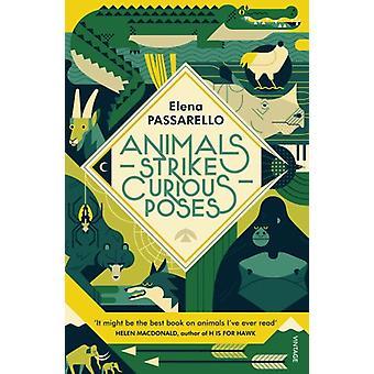 Animals Strike Curious Poses by Elena Passarello - 9781784707354 Book