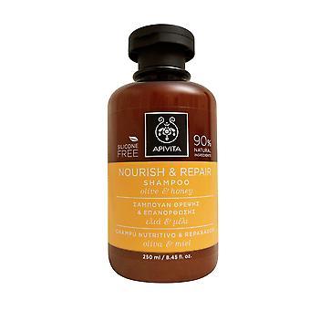أبيفيتا تغذية & إصلاح شامبو الزيتون & العسل أوقية 8.45