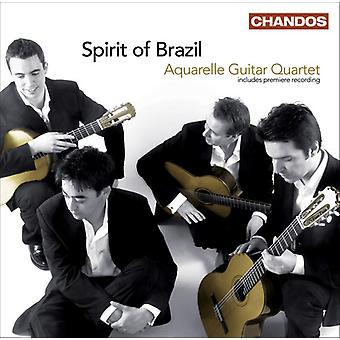 Aquarelle gitaarkwartet - geest van Brazilië [CD] USA import