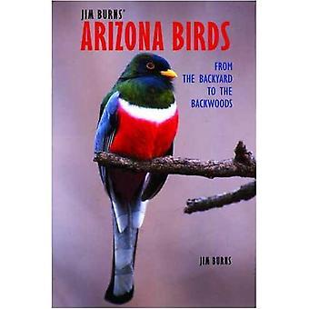 Jim Burns Arizona fåglar: Från bakgården till obygden
