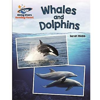 Reading Planet  Whales and Dolphins  White Galaxy by Sarah Webb