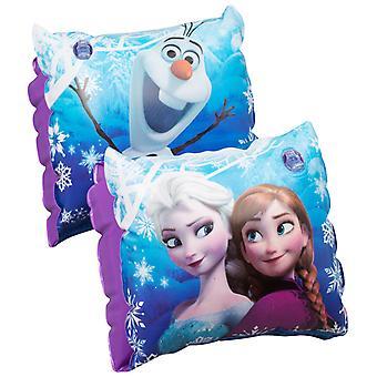 Disney Frozen Frost Anna Elsa armpuffs 3-6Yrs