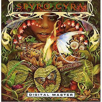 Spyro Gyra - importazione USA Morning Dance [CD]