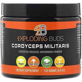 Exploding Buds, Cordyceps Militaris, Certified Organic Mushroom Powder, 4.2 oz (