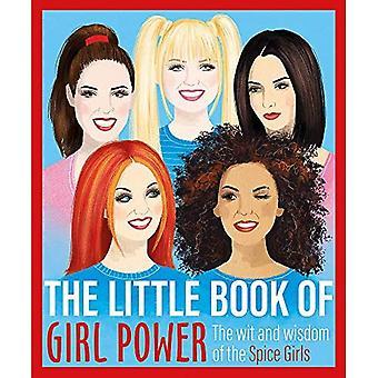 O Pequeno Livro do Poder feminino: A Sagacidade e sabedoria das Spice Girls