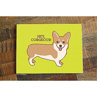 Hey Corgeous-funny Anniversary Or Love Card