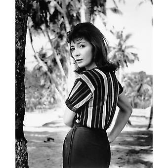 The Big Gamble Juliette Greco 1961 Tm And  20Th Century Fox Film Corp All Rights ReservedCourtesy Everett Collection Photo Print