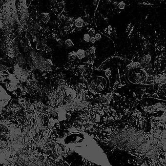 Primitive Man / Unearthly Trance - Split [CD] USA import