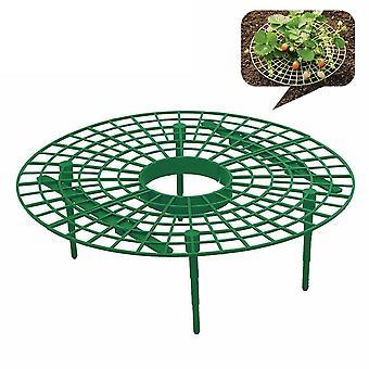 Jordbær Voksende Circle Support Rack Plant Tool, Landbrug, Forbedre Harvest,