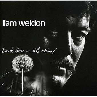 Liam Weldon - Dark Horse on the Wind [CD] USA import