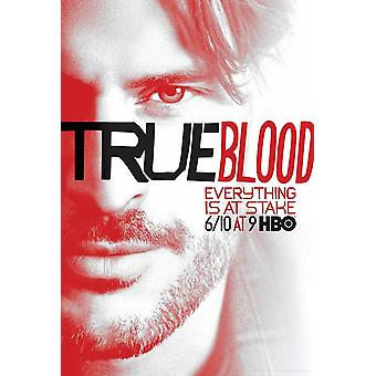 True Blood (TV)-seizoen 5 filmposter (11 x 17)