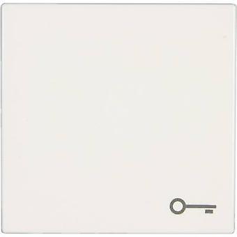 Jung Cover Key symbol toggle LS 990, LS design, LS plus Alpine white LS 990 T WW
