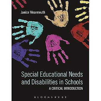 Necessidades educativas especiais e deficiência nas escolas