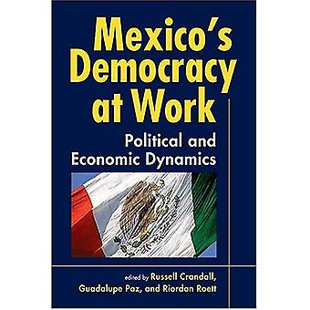 Mexikos demokrati på jobbet: politisk och ekonomisk dynamik