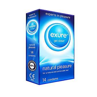 14 Exure 自然喜びプレーン コンドームのパック
